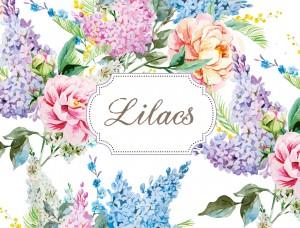 lilacs cover