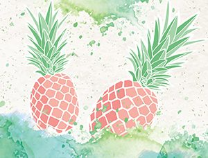 pink pineapple cover